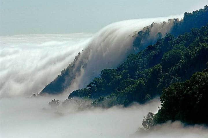 la Reserva de la Biósfera El Triunfo. Foto I like México