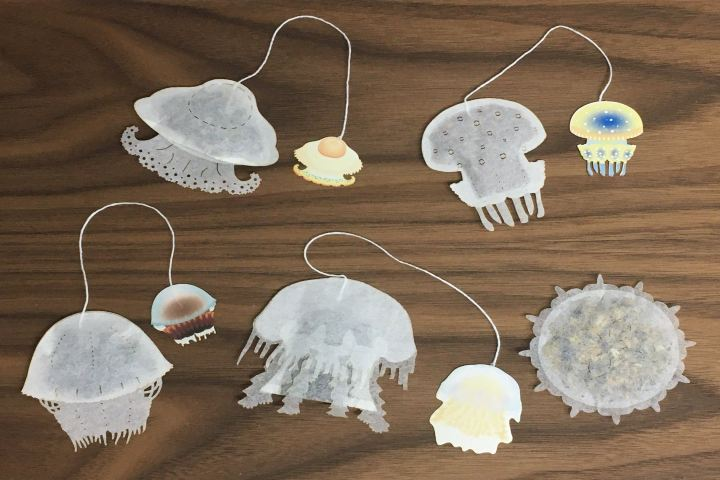Ocean Teabag foto: Bolsas de Té