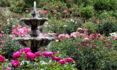 Visit the USA Foto: Ciudad de las rosas