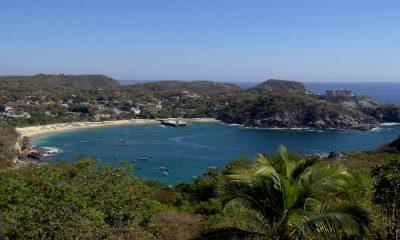 Puerto Ángel Foto: Adam Jones