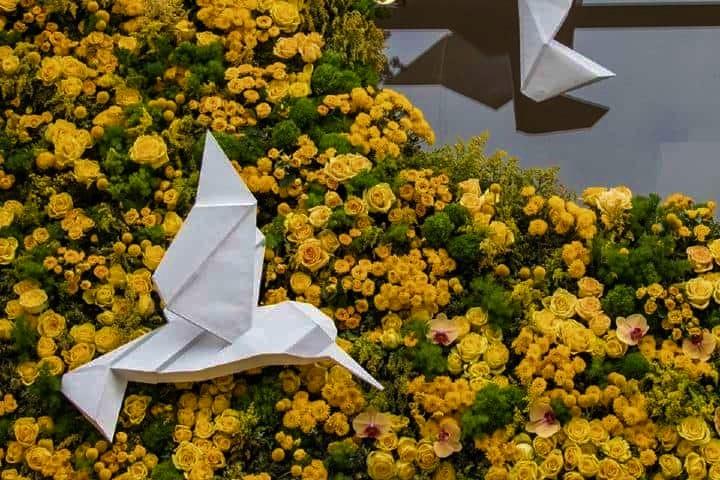 Aves y flores. Foto: Festival FYJA Facebook