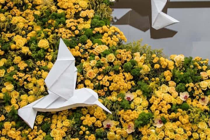 Aves y Flores Foto: Festival FYJA Facebook