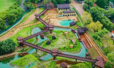 Foto. Bio Parque do Rio.. (Facebook)