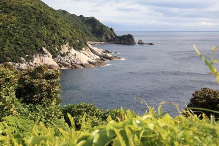 Isla de Yakushima Foto Japan Endless Discovey