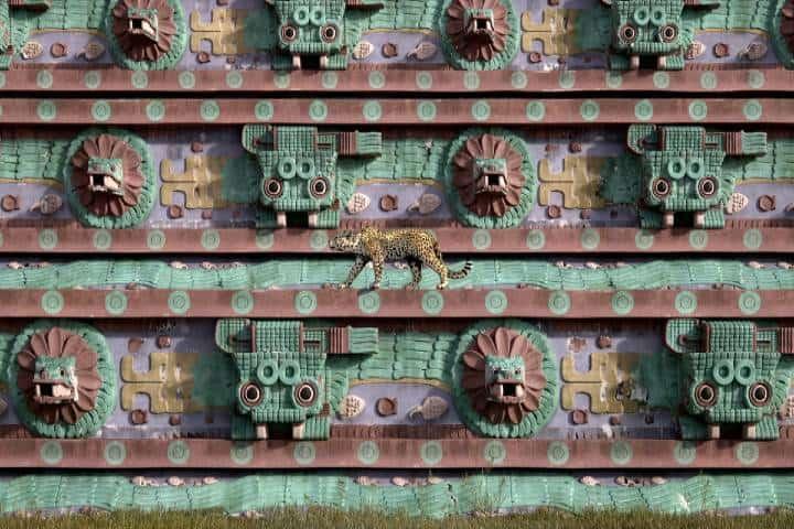 Jaguar en Teotihuacán Foto: iToo