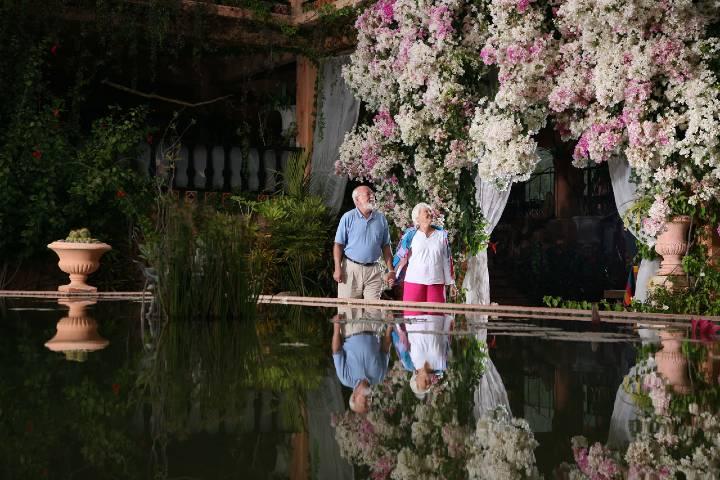 Jardín Botánico Foto: Puerto Vallarta, Jalisco