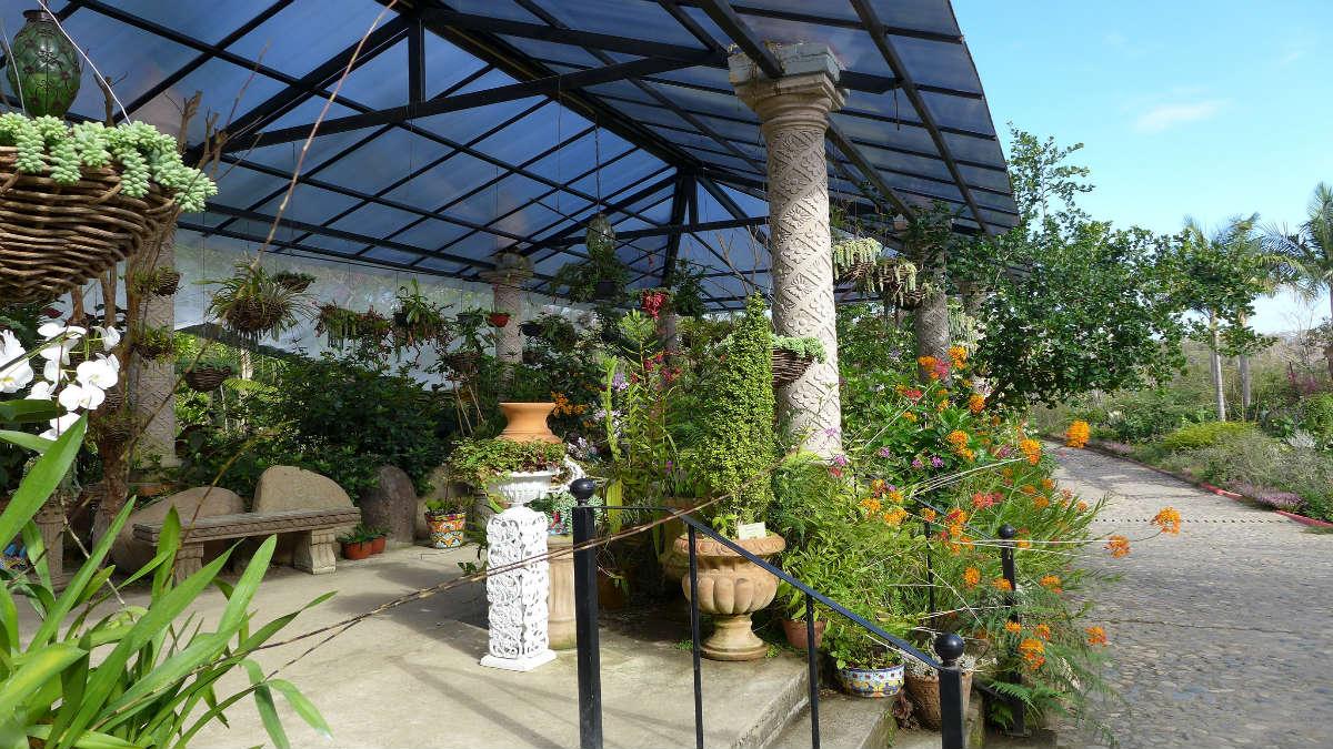 Jardín Botánico de Puerto Vallarta. Foto Scott Zona