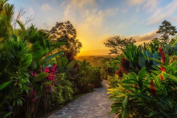Hotel en medio de la selva de Costa Rica.