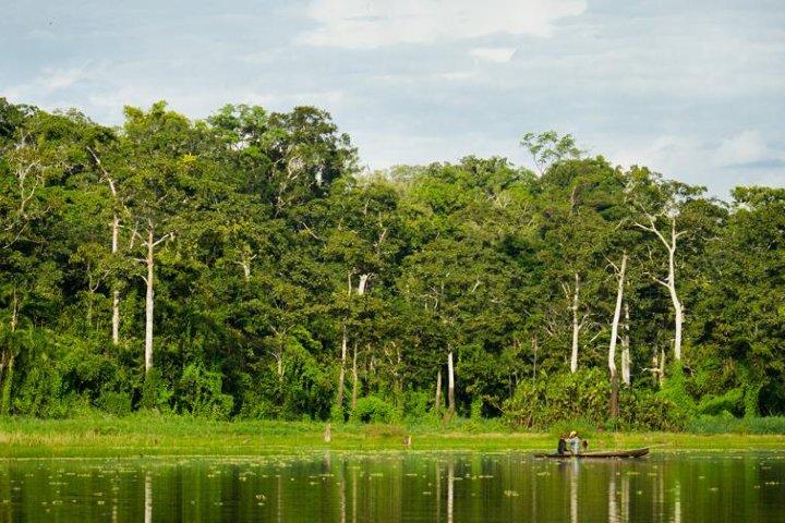 Reserva Nacional Pacaya Samiria. Foto_ Perú Info