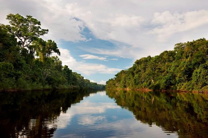 Reserva Nacional Pacaya. Foto_ Actualidad Ambiental