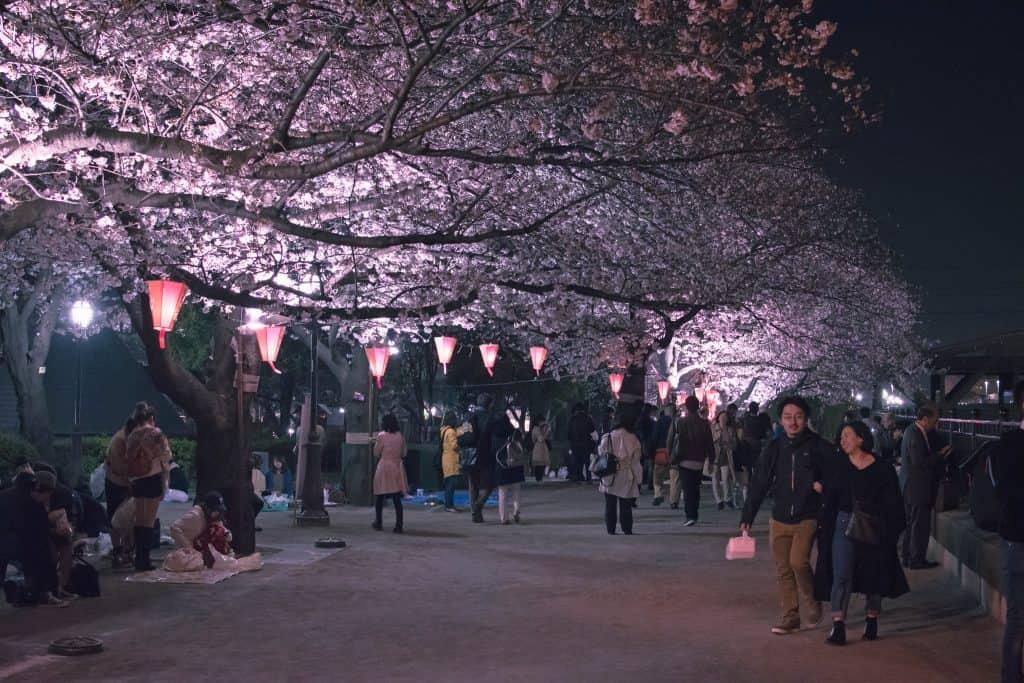 Sumida Park Foto: Archivo