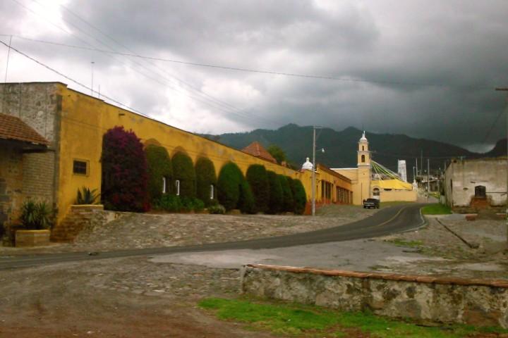 Tecomalucan. Bosque de catarinas en Tlaxcala.