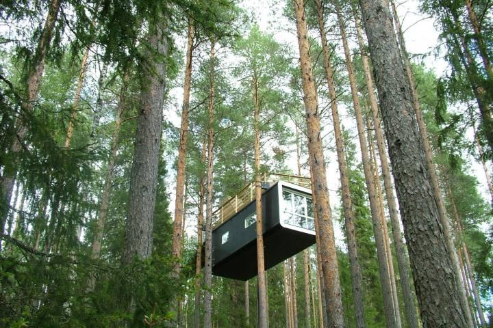 Treehotel. Foto_ Descubre tu mundo