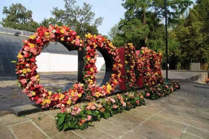 festival de flores y jardines cancelado. Foto: ContraRéplica