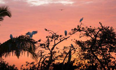 San Blas Plan B Foto Alan Harper 2