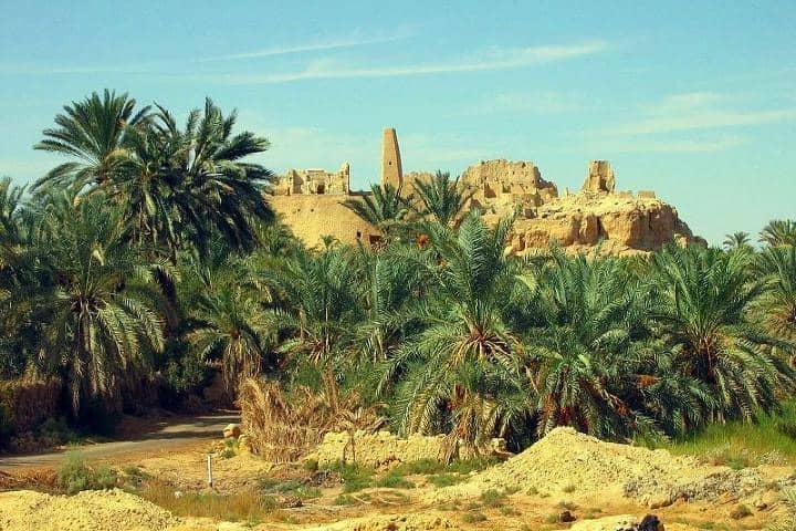 Oráculo de Amón Foto: Mediterráneo antiguo legado griego