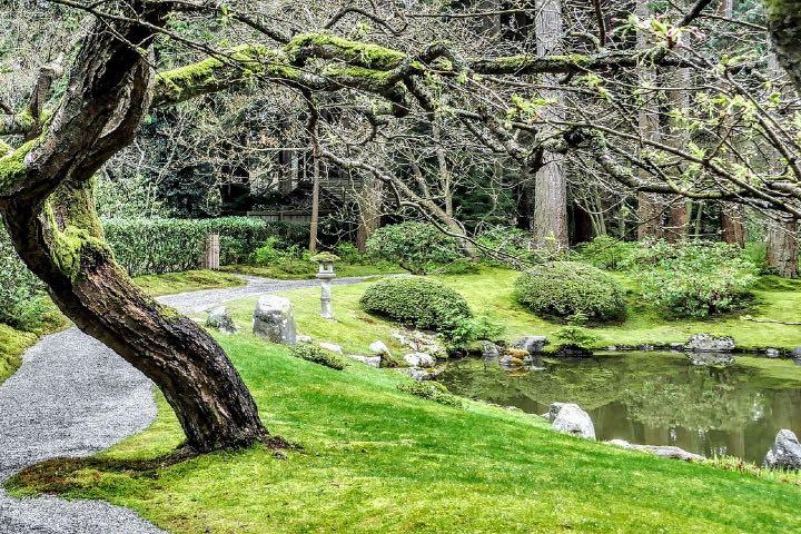 Este bello parque es uno de los lugares que puedes visitar gratis en Vancouver Foto Guy Dugas