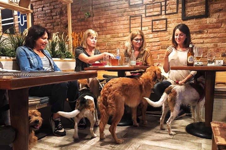 Lomitos en EntreDogs Café. Foto: EntreDogs Facebook