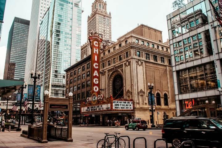 Museos de Chicago sin salir de casa. Foto Jurgen Polle.