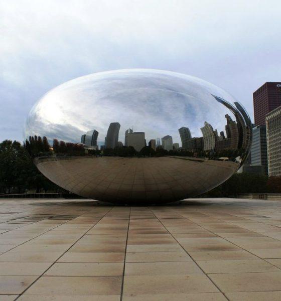 Museos de Chicago sin salir de casa. Foto Rick Lobes.