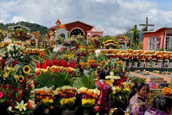 Producen flores especialmente para Día de Muertos