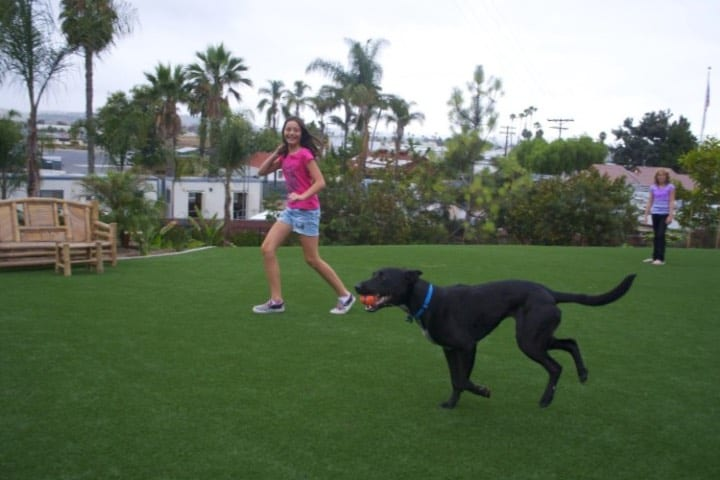 San Diego Humane Society y SPCA Dog Park - Oceanside Foto Nathan Scharn