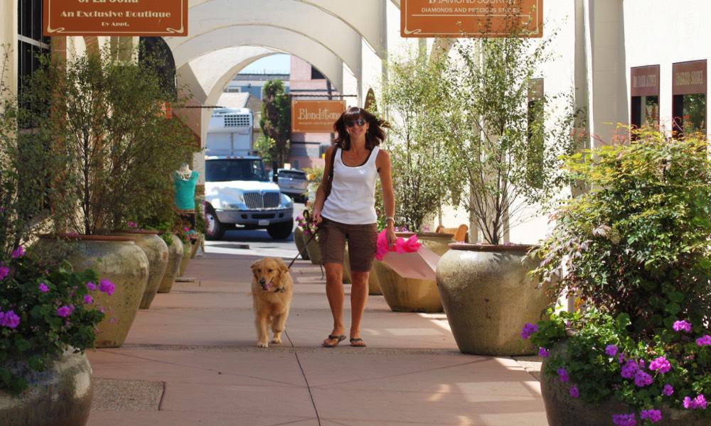 San Diego destino pet friendly Foto SanDiego.org