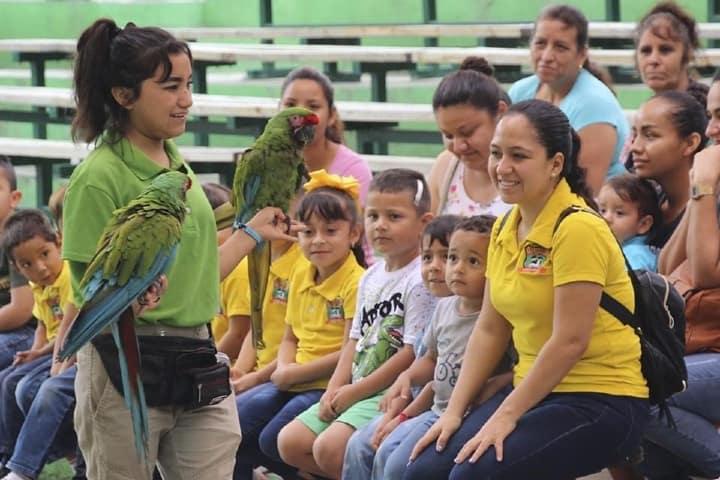 Show de aves en Loroventura Foto Loventura