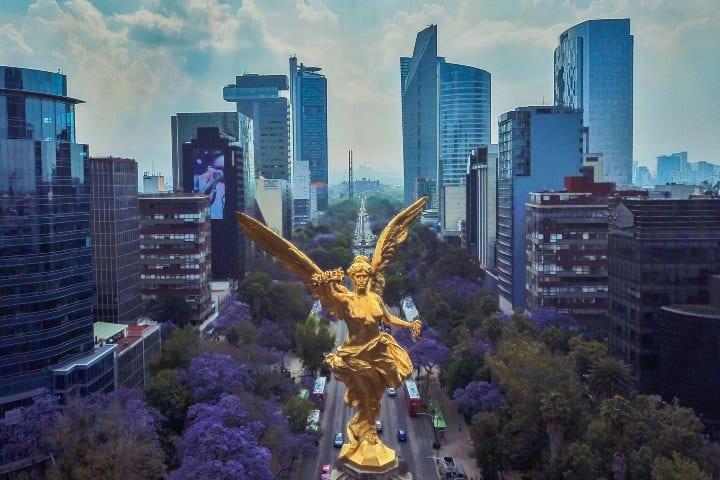 Avenida Reforma de la Ciudad de México Foto: Archivo