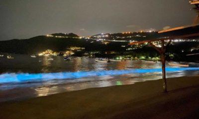Bioluminiscencia en playa de Acapulco Foto Elle