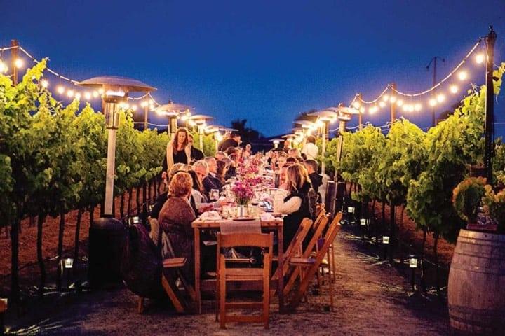 En los Viñedos Del Valle de Guadalupe puedes llevar a cabo tu boda Foto Archivo