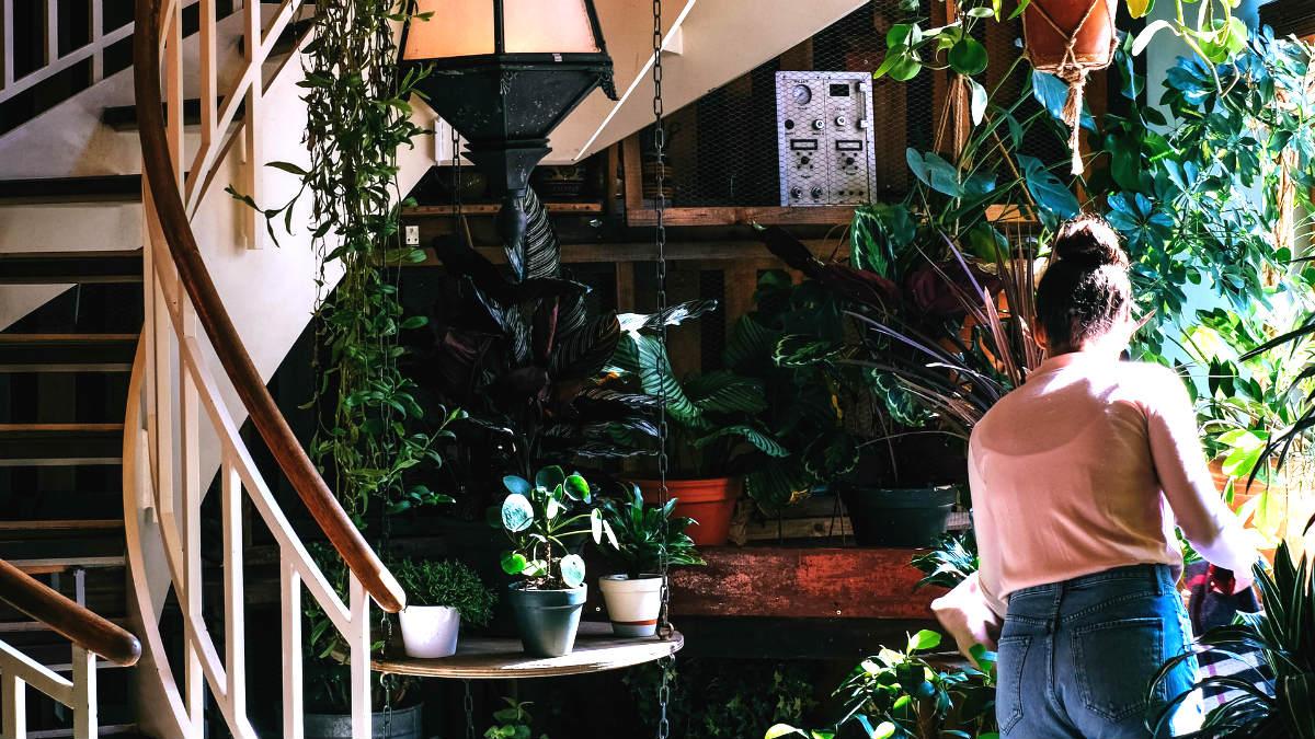 Hoteles sutentables en México. Foto: Monika Kozub