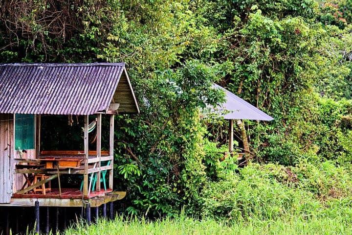 Las villas de Nanciyaga son un ejemplo de vivir en la naturaleza Foto Reserva Ecológica Nanciyaga | Facebook