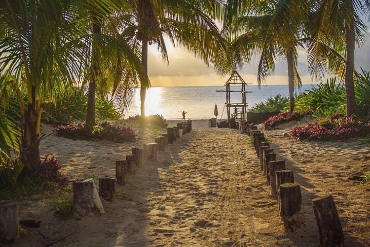 Los paraísos naturales de los hoteles sustentables son increíbles Foto Palace Resort | Facebook
