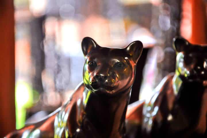 Pantera de barro negro, artesanía mexicana Foto: Eduardo Robles Pacheco