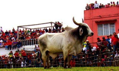 Fiestas, ferias y clima Foto: Tonatiuh Mendez Carrizosa