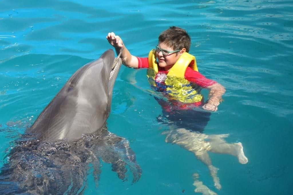 Puedes interactuar con delfines Foto Tripadvisor