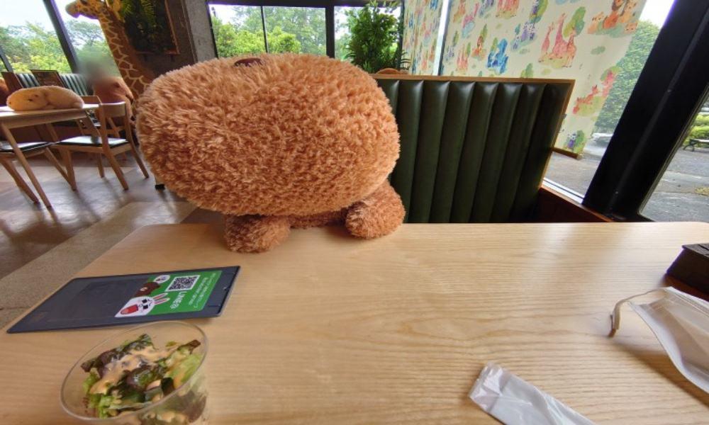 Capibaras en café de Japón Foto @chacha0rca | Twitter