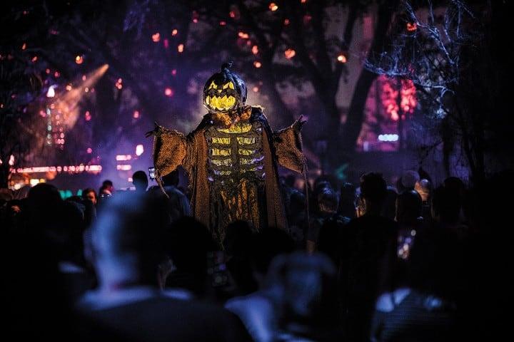 Jack O' Lantern Foto Halloween Horror Nights Universal Orlando