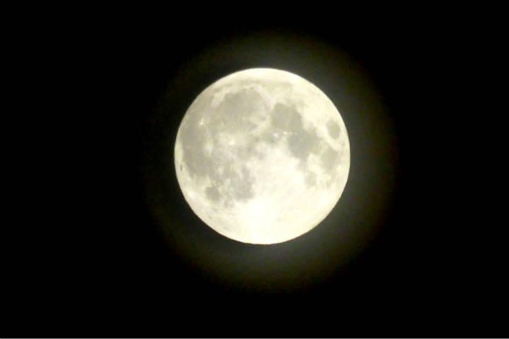 Cuando veas la luna podrás ver a un conejo, ¡presta atención! Foto: Sean MacEntee