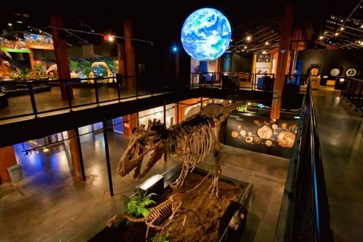 Museum of Natural Science. Foto: Visit Sugar Land