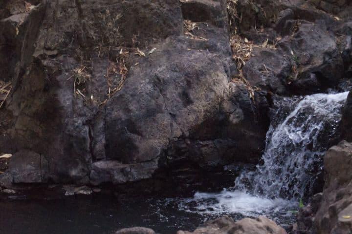 La cascada del Parque Taretan de Atotonilco el Alto, Jalisco Foto: Miguel Arvizu