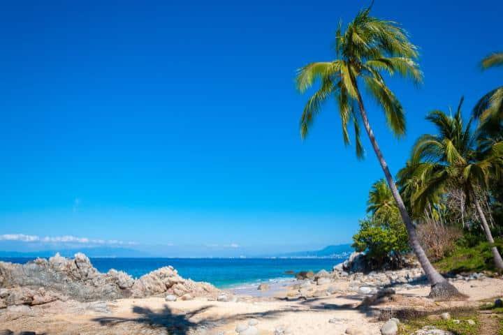 La reapertura de playas en Puerto Vallarta será con las medidas sanitarias adecuadas Foto: Archivo