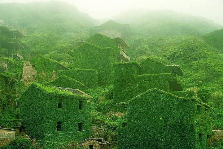 La naturaleza regresa a su hogar Foto: Destino Infinito