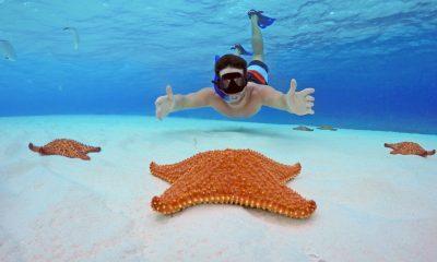 Snorkel El Cielo Playa Mia Cozumel Foto Turismo Cozumel