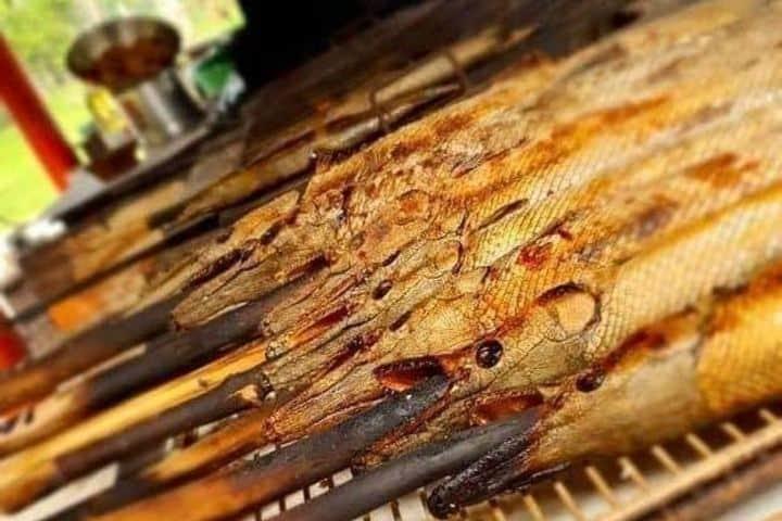El pejelagarto es una delicia de la gastronomía mexicana, si tienes oportunidad de probarlo ¡Debes hacerlo! Foto: picuki.com