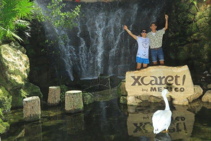 Dentro de las cosas que hacer en Xcaret puedes visitar el aviario Foto: Daniel Rea