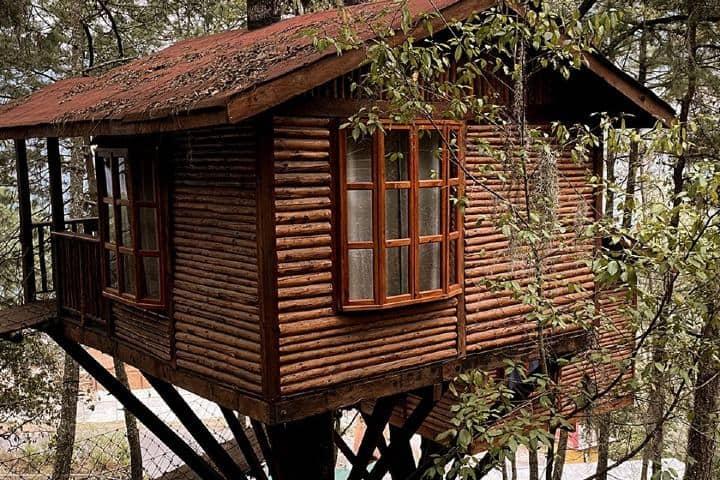 Cabaña casa del árbol Foto Kali Tree | Facebook