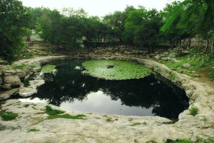Cenote Xlaca ¡Hermoso! Foto: Flickr