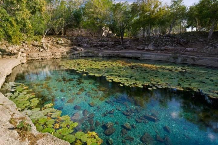 Cenote Xlacah en Dzibilchaltún Yucatán. Foto: explorandocenotes.com.mx
